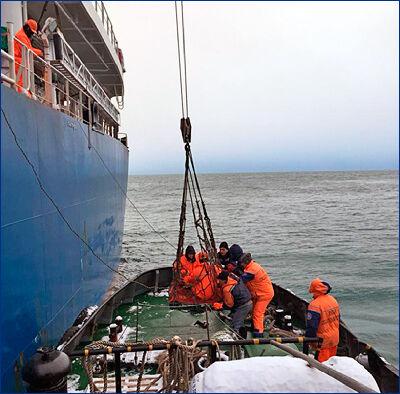 Медицинская эвакуация травмированного члена экипажа балкера «Шандонг Фу Ху»